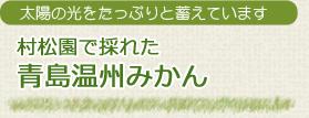 村松園で採れた青島みかん (温州ミカン) 青島みかんジュース 青島みかんジャム